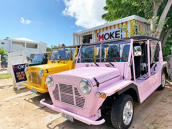 Moke Anguilla Car Rentals- Pink Flamingo, Mango and Gineup mokes