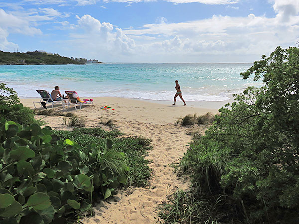 stepping onto sandy hill beach from bird of paradise path