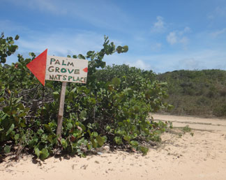 palm grove sign points the way to savannah bay