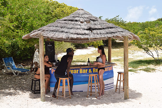 the tiki hut bar