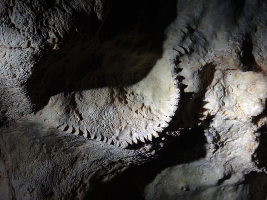 formations that look like jaws inside katouche cave