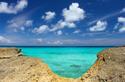 Anguilla Obsession -Lee Zucco