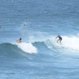 surfing Barbados