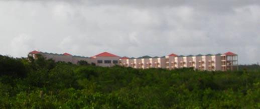 royale caribbean