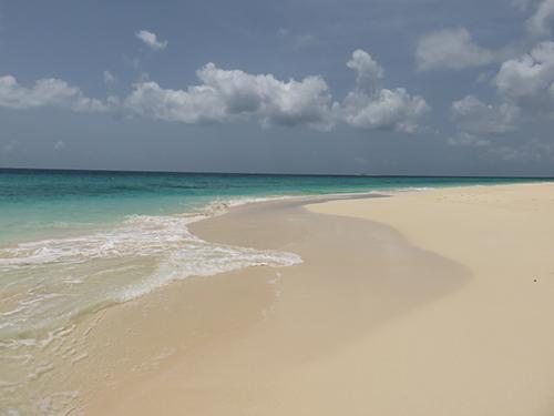 sands of long bay beach
