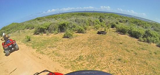 overlooking savannah bay and junk's hole