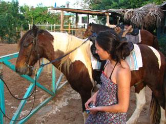 anguilla seaside stables vegas