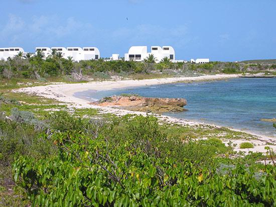 Anguilla Sherricks