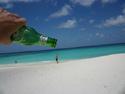 Anguilla Memories -Linda Primomo