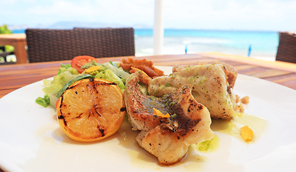 red snapper at breezes