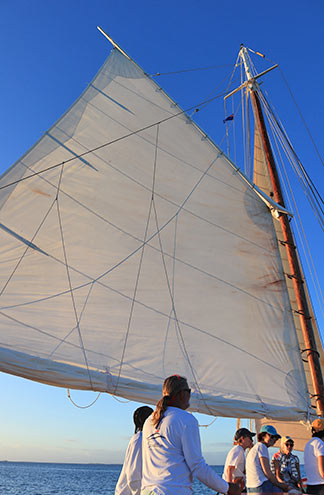 sails up on tradition sailing charter
