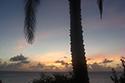 What makes Anguilla so special... -Tara Irwin