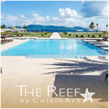 the reef anguilla