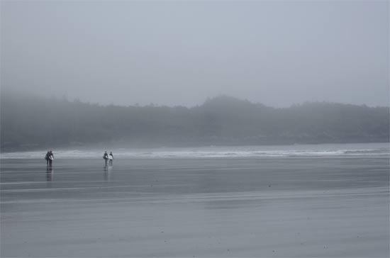 tofino surf long beach