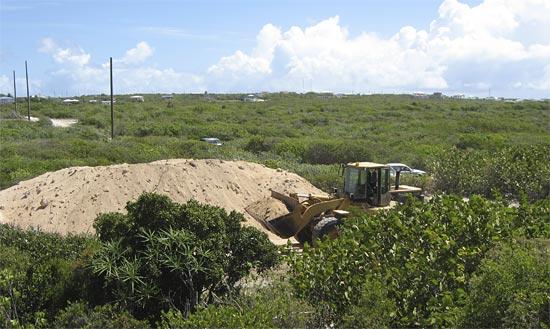 Anguilla sand