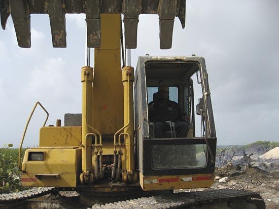 Anguilla excavator
