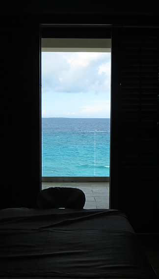 the view from the spa room