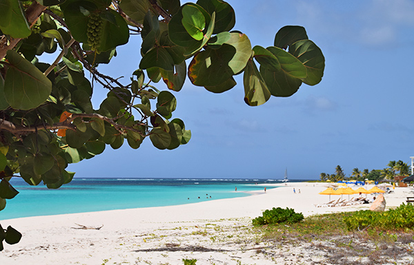 shoal bay beach anguilla