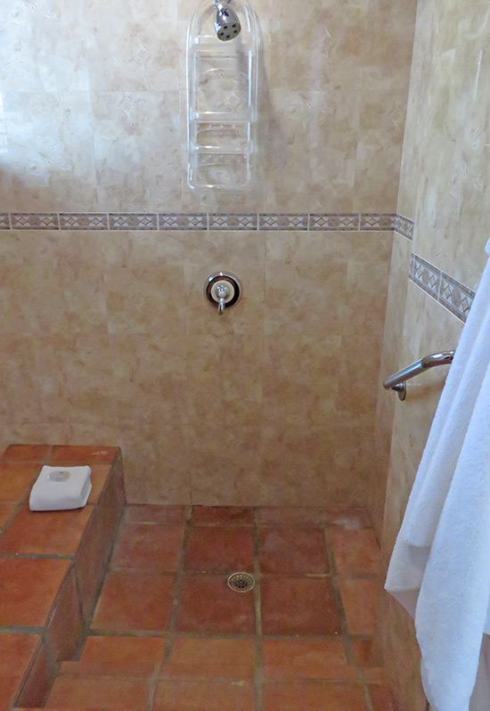 walk in shower at beach palm villa