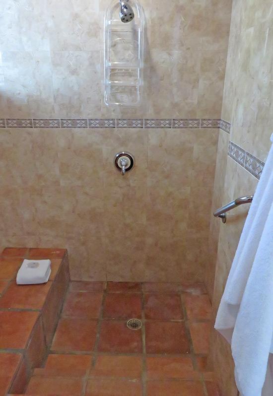 walk in shower at beach palm villa