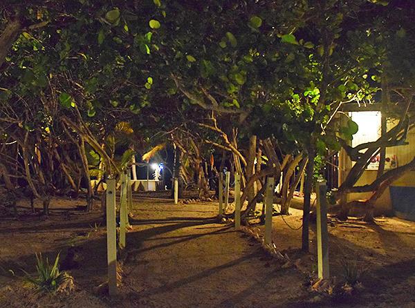 pathway to elite restaurant anguilla