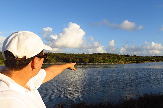 jackie cestero pointing out the sites on a nature tour in anguilla