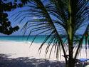 Paradise -Gary Parker