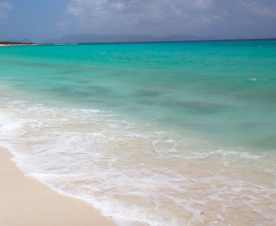 the turquoise of shoal bay west