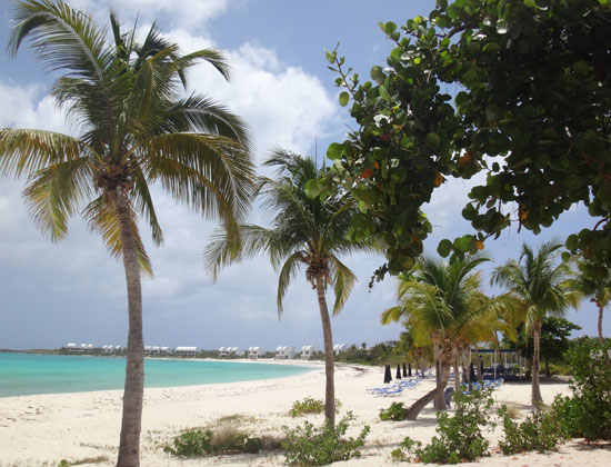 looking back at trattoria tramonto and the west side of shoal bay west
