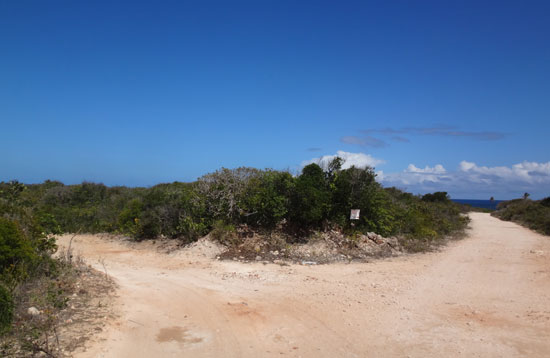 driving to palm grove in anguilla