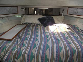 Bedroom inside the Seagrape