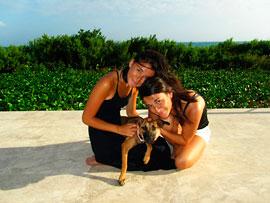 anguilla villas for sale st. martin view