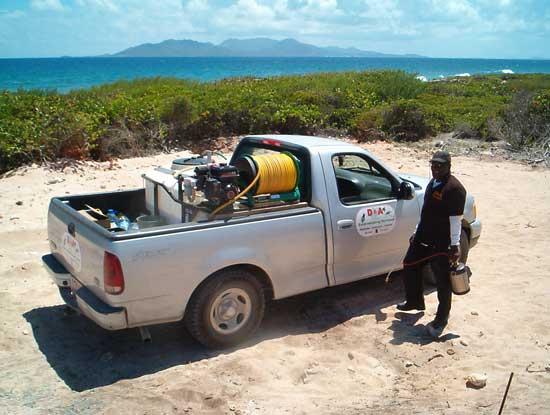 anguilla exterminator