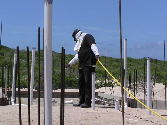anguilla exterminator 2