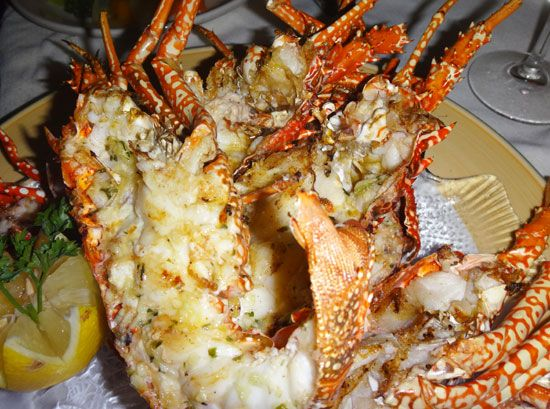 crayfish with garlic butter at e's oven in anguilla
