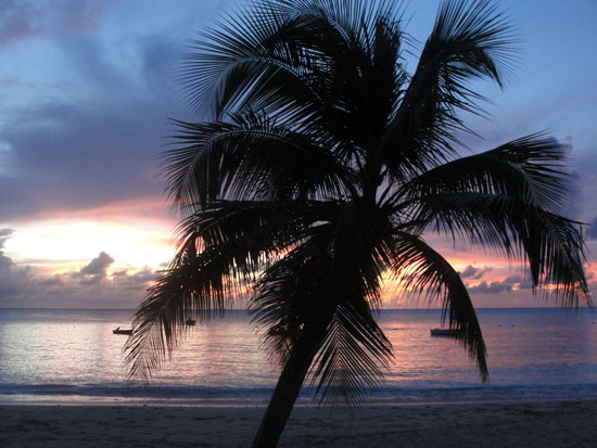 more crocus bay sunset