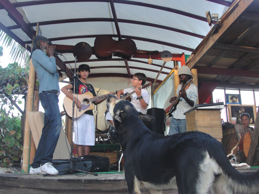 bankie banx playing at the dune preserve in Anguilla
