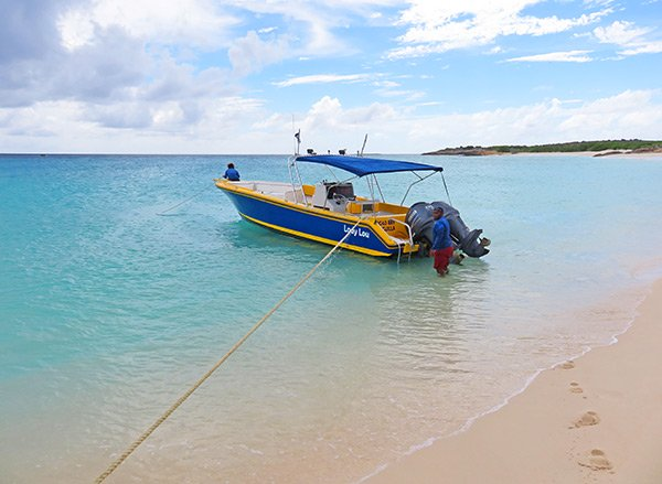 lady lou shoal bay scuba at dog island