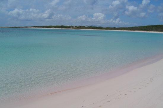 pristine savannah bay