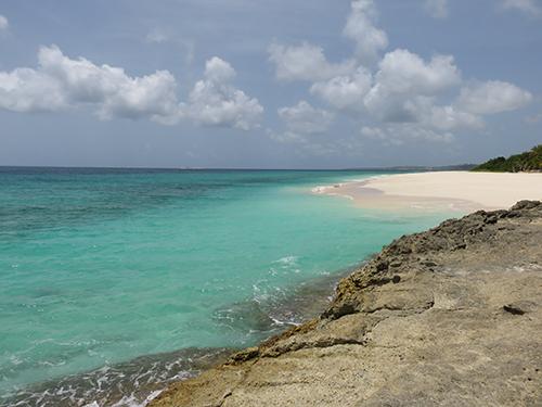 blue waters of long bay beach