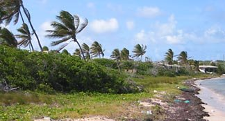 anguilla real estate forest bay