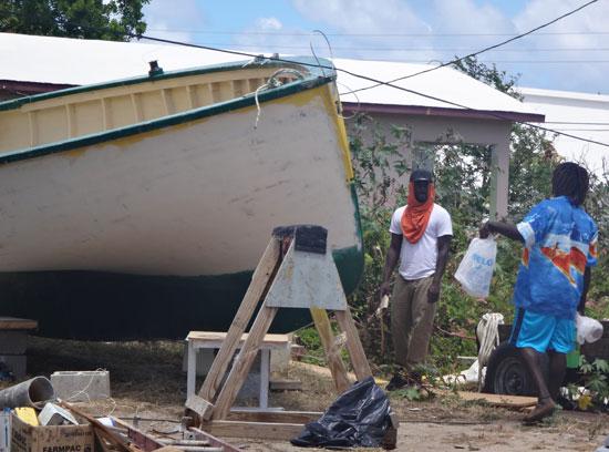 de tree sailing boat in ian cartys yard