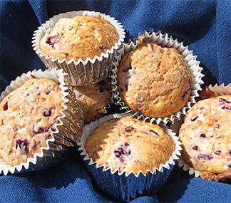 tradition muffins anguilla