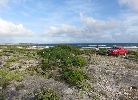 east end anguilla windward point