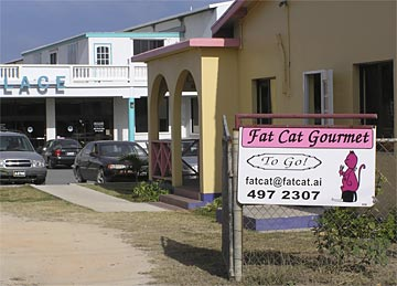 Caribbean Vacations Fat Cat