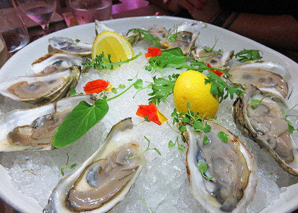 fresh oysters from the yacht club restaurant at the reef in anguilla