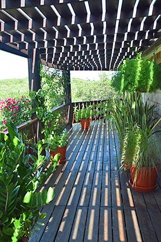 greenery at wesley house villa rental