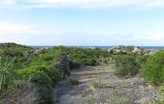 heading out to aberdam on anguilla's east end