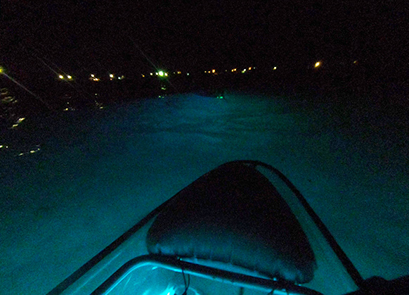 liquid glow night kayak tour