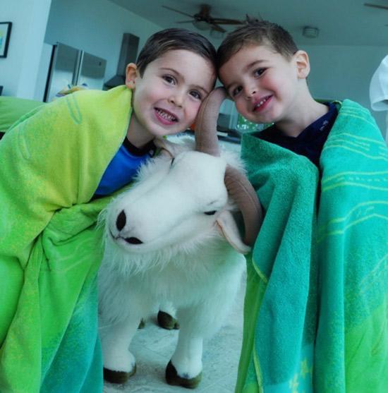 kids love the cute anguilla goats